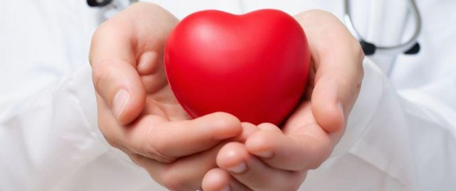 Le don d'organes – Terminologie