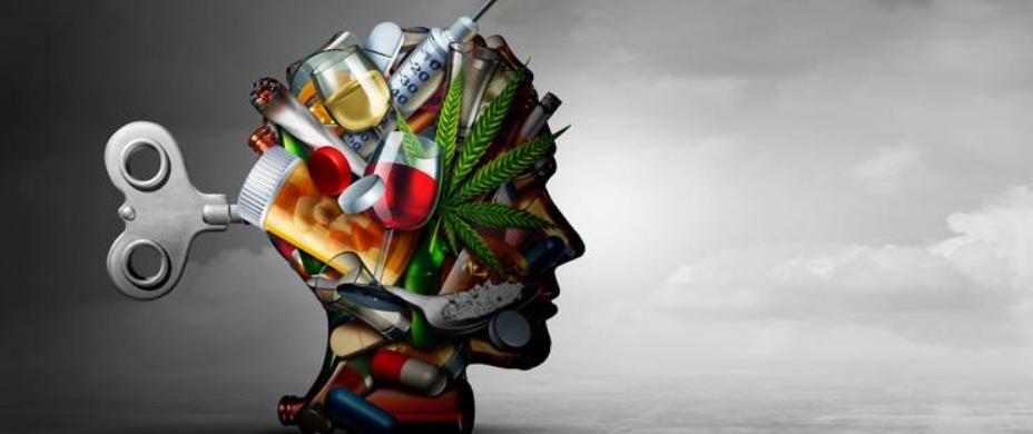 Les addictions comportementales – Facteurs de risque et de vulnérabilité